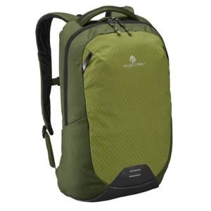 Eagle Creek Wayfinder Backpack 20l green