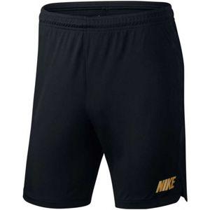 Nike DRY SQD SHORT K 19 (BQ3776-014) šortky - L